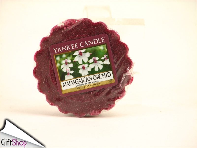 0007129_tartina-madagascan-orchid-out-of-africa-yankee-candle